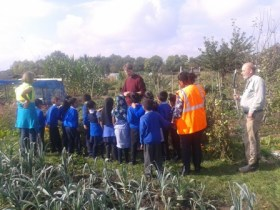 Pupils ask questions at the tomato patch